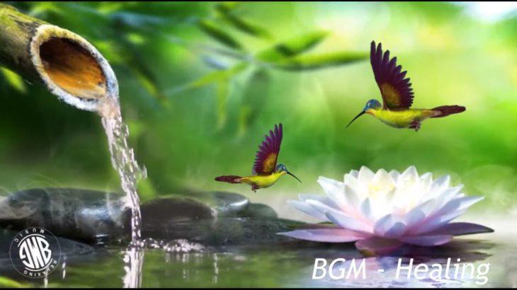 流れる水の音でリラックスできるピアノ瞑想音楽 • リラックス、睡眠、マッサージ、ヨガ、瞑想 – 水の音でリラックス、脳、創造力を刺激、心に良い【癒し音楽BGM】