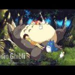 【作業用、勉強、睡眠用BGM】リラックス音楽コレクション   Studio Ghibli Piano Collection