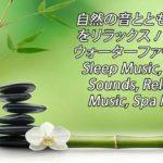 【癒し音楽BGM】 自然の音とともに音楽をリラックス バンブーウォーターファウンテン Sleep Music, Water Sounds, Relaxing Music, Spa Music 2021