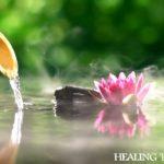 【癒し音楽BGM】 自然の音とともに音楽をリラックス バンブーウォーターファウンテン Sleep Music, Water Sounds, Relaxing Music, Spa Music