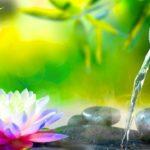 自然の音で音楽をリラックスバンブー噴水[ヒーリングミュージックBGM]
