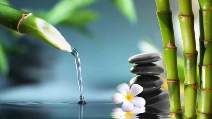 Bamboo Water Fountain || 自然の音とともに音楽をリラックス バンブーウォーターファウンテン 【癒し音楽BGM】