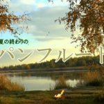 【回復のひと時】 パンフルート・ミュージック  リラックスBGM 癒しの音色