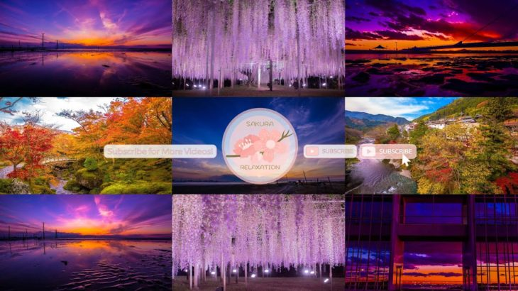 Japanese Relaxation Special Edition EP33| Relaxing Music • 美しいリラックスミュージック • ヨガ瞑想リラクゼーション • 美しい音色 ピアノ