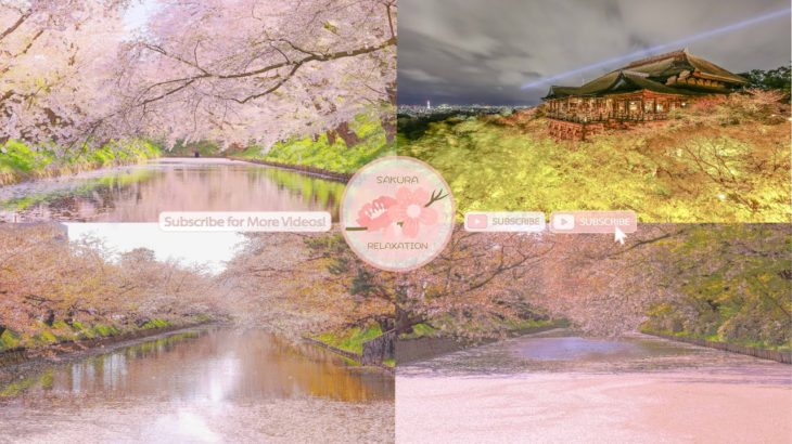 Japanese Sakura Relaxation Photos EP213   Relaxing Music • 美しいリラックスミュージック • ヨガ瞑想リラクゼーション • 美しい音色 ピアノ