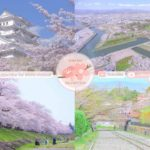 Japanese Sakura Relaxation Photos EP202 | Relaxing Music • 美しいリラックスミュージック • ヨガ瞑想リラクゼーション • 美しい音色 ピアノ