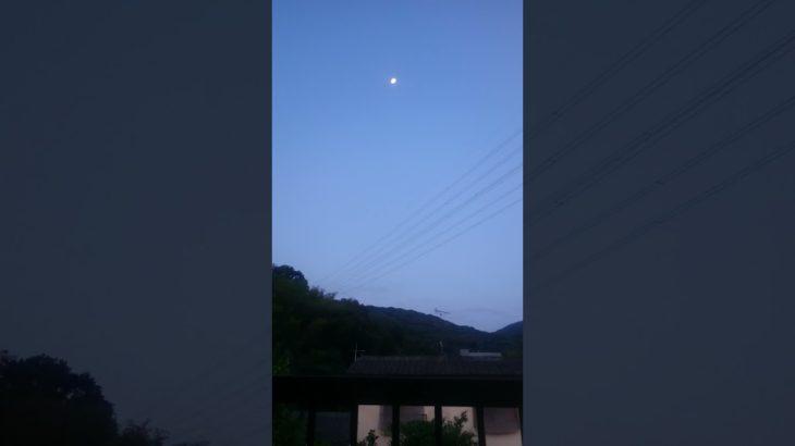 日の出まじかのお月様と鳥の声
